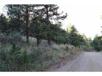 Home for sale: 832 Highland Meadows Dr., Florissant, CO 80816