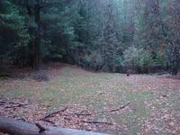 Home for sale: 290 Rush Creek Rd., Twain, CA 95984