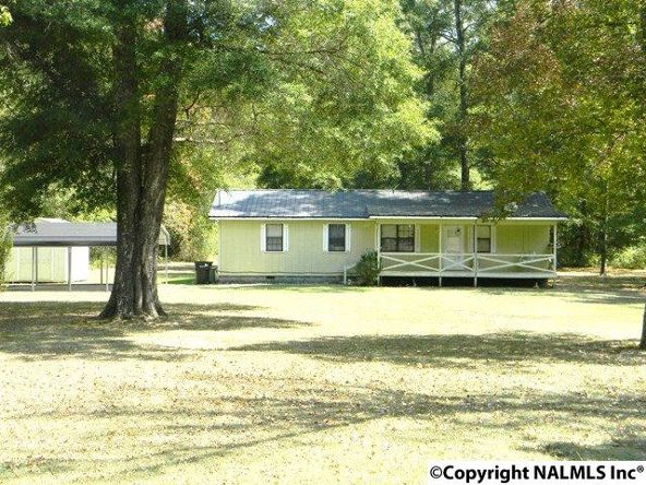 668 Jones Chapel Rd., Piedmont, AL 36272 Photo 1