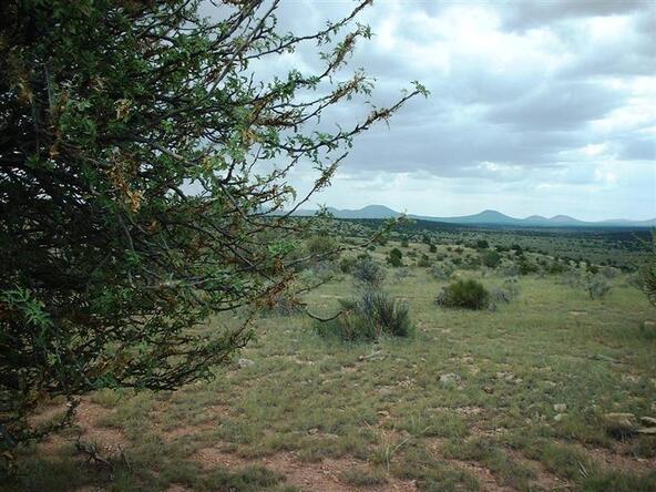 7757/7925 Sharp Knife Rd., Williams, AZ 86046 Photo 6