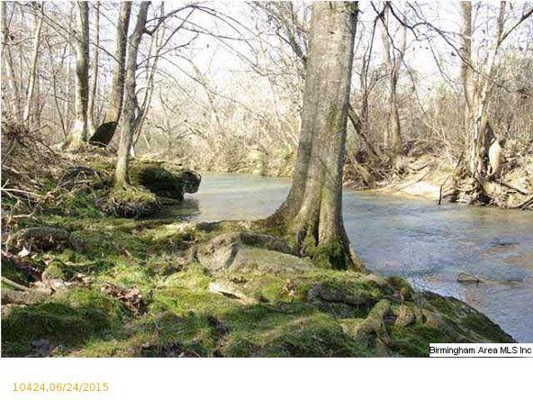 4 Horton Mill Rd., Oneonta, AL 35121 Photo 32