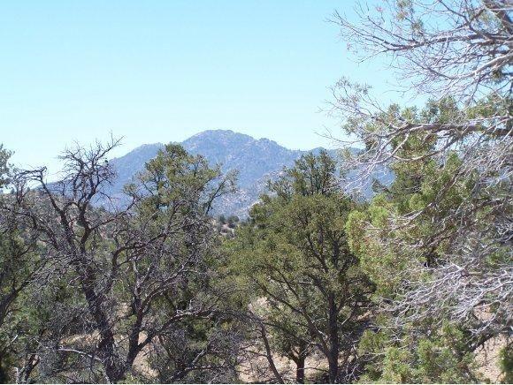 6735 W. Almosta Ranch Rd., Prescott, AZ 86305 Photo 3