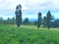 Home for sale: Kalai Waa, Naalehu, HI 96772
