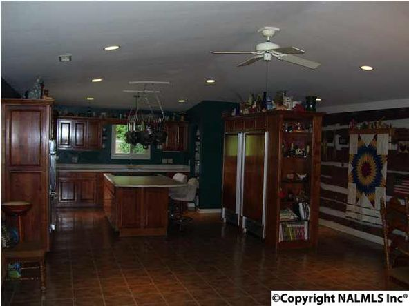 621 County Rd. 604, Hollytree, AL 35751 Photo 7