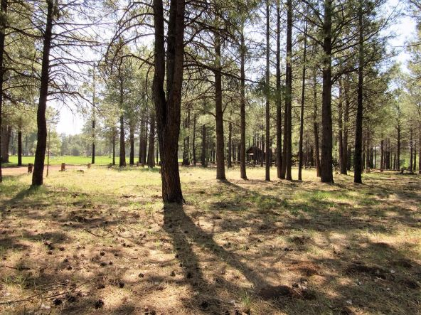 4621 Buck Springs Rd., Pinetop, AZ 85935 Photo 4