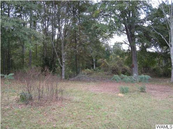 120 Bear Creek Cut Off Rd., Tuscaloosa, AL 35405 Photo 24
