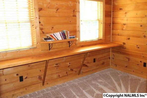 4475 County Rd. 106, Mentone, AL 35967 Photo 34