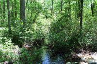 Home for sale: Parcel C Whittle Pond Rd., Williston, SC 29853