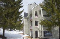 Home for sale: 16 Trailside Village Way, Dover, VT 05356