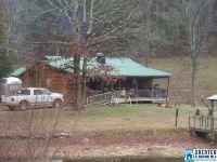 Home for sale: 7668 Rabbittown Rd., Piedmont, AL 36272