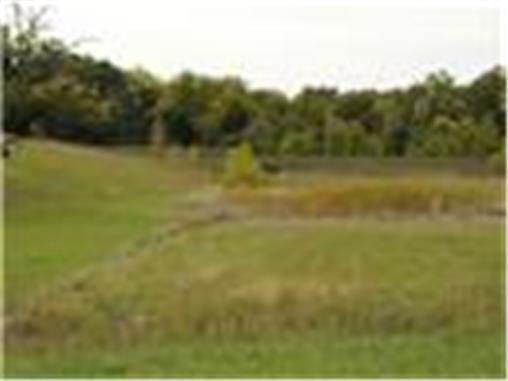13105 W. 54th St., Shawnee, KS 66216 Photo 6