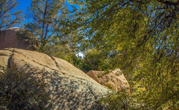 9880 N. Clear Fork Rd., Prescott, AZ 86305 Photo 66