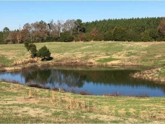550 Co Rd. 1749, Holly Pond, AL 35083 Photo 6