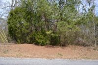 Home for sale: Lot 5 Murphy Lake Rd., Dadeville, AL 36853