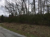 Home for sale: Lot 30 Virgin Bluff Dr., Galena, MO 65656