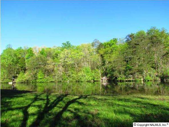 102 County Rd. 945, Mentone, AL 35984 Photo 10