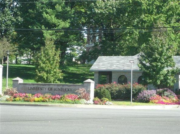 220 Cedar, Lexington, KY 40508 Photo 22