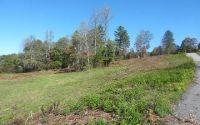 Home for sale: Lt 3 Brookwood Hills, Blairsville, GA 30512