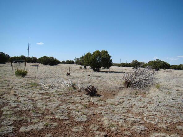 2319 Sitgreaves St., White Mountain Lake, AZ 85912 Photo 10