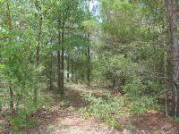 Home for sale: Lot 13&14 Juniper, DeFuniak Springs, FL 32433