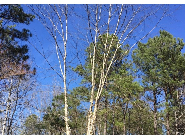 97 Breckenridge Pl., Deatsville, AL 36022 Photo 1