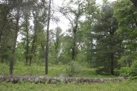 Home for sale: Parcel 4 10 Mile Rd., Irons, MI 49644