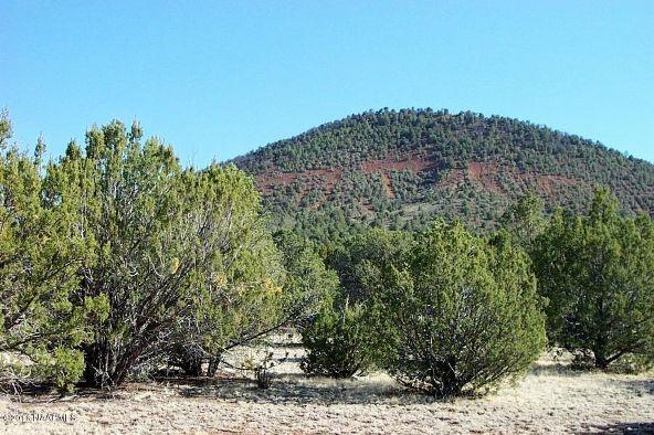7217 N. Audrey Way, Williams, AZ 86046 Photo 20