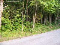 Home for sale: 168 Bat Creek Shores Ln., Vonore, TN 37885