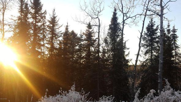 14613 E. Wilderness Rim, Willow, AK 99688 Photo 15