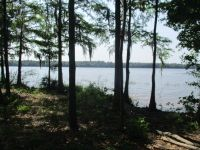 Home for sale: Lot 157a Wolfs Thick Rd., Cordele, GA 31015