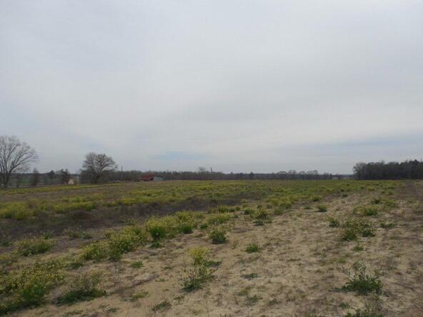 7 Acres Hardy Rd., Rehobeth, AL 36301 Photo 17