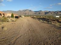 Home for sale: 1523 E. Lime Kiln Dr., Littlefield, AZ 86432