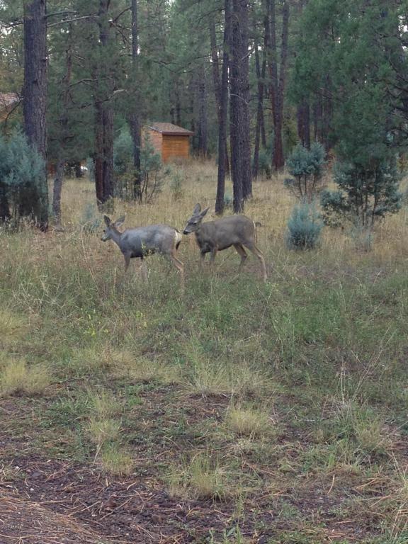 2077 S. Wild Oak Trail, Pinetop, AZ 85935 Photo 2