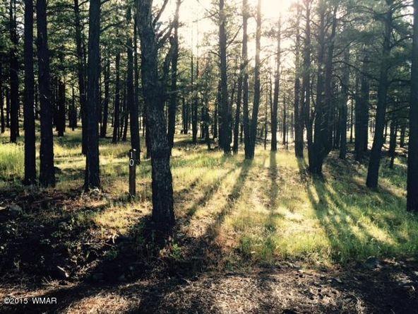 9580 Sierra Springs Way, Pinetop, AZ 85935 Photo 16