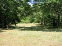 Home for sale: Lot 33 Park Pl. Terrace, Fort Gaines, GA 39851