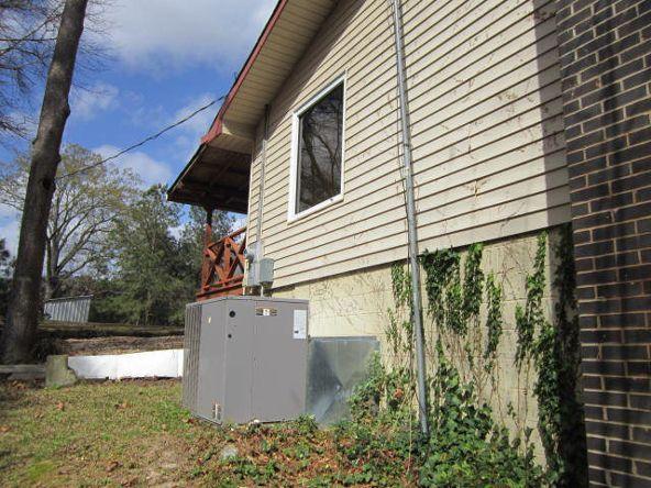 2225 Powell Trace, Abbeville, AL 36310 Photo 10