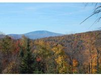 Home for sale: 0 Little Pond Rd., Chester, VT 05143