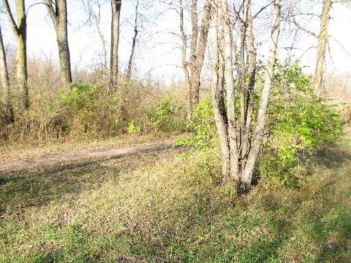 32747 Nikki Ln., Wilmington, IL 60481 Photo 2