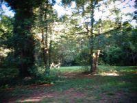 Home for sale: 0 Wayne St., Darien, GA 31305