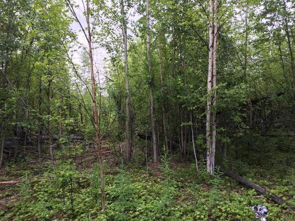 15261 W. Crest Dr., Big Lake, AK 99652 Photo 1