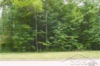 Home for sale: Beech Tree Ln. Lot B, Frankenmuth, MI 48734