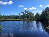 Home for sale: 13 Wide Water Cir., Wewahitchka, FL 32465