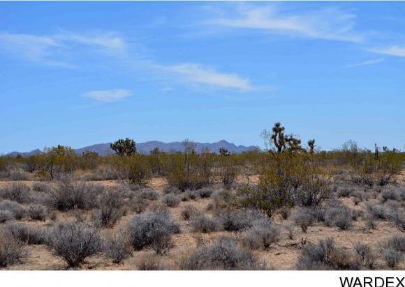 239 S. Tortoise Rd., Yucca, AZ 86438 Photo 5