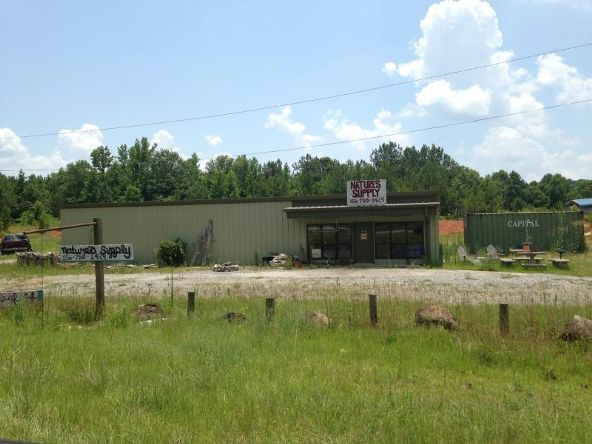 14512 Hwy. 280, Jacksons Gap, AL 36861 Photo 1