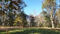 Home for sale: 1 Rose Ridge - Lot #1, Fairview, TN 37062