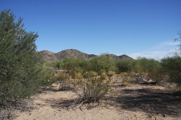 55410 W. Ivory Rd., Maricopa, AZ 85139 Photo 15