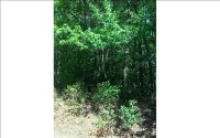 Home for sale: Lot 7 Holly Ridge Ln., Murphy, NC 28906