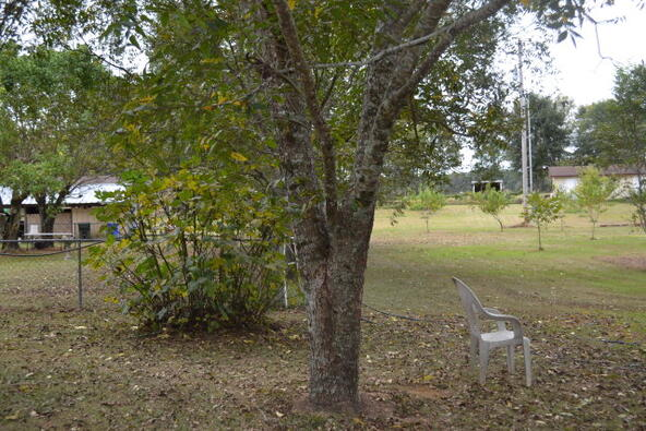 1723 Omussee, Dothan, AL 36303 Photo 9