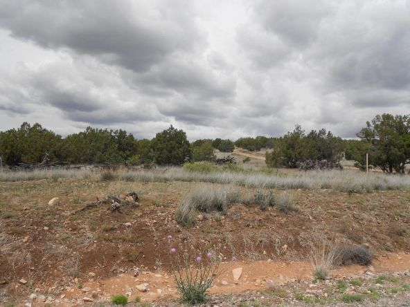 4650 W. Dillon Wash Rd., Prescott, AZ 86305 Photo 2