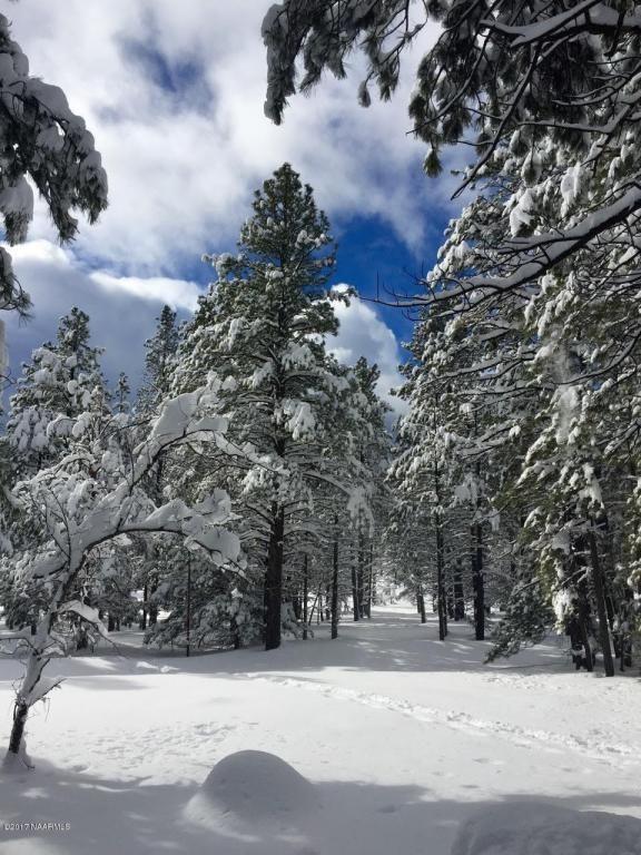125 E. Mount Elden Lookout Rd., Flagstaff, AZ 86001 Photo 8